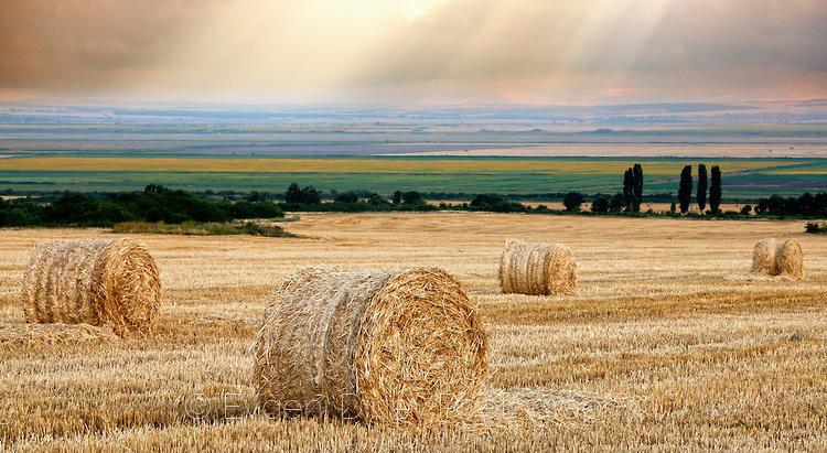 Лъчи в сламено поле