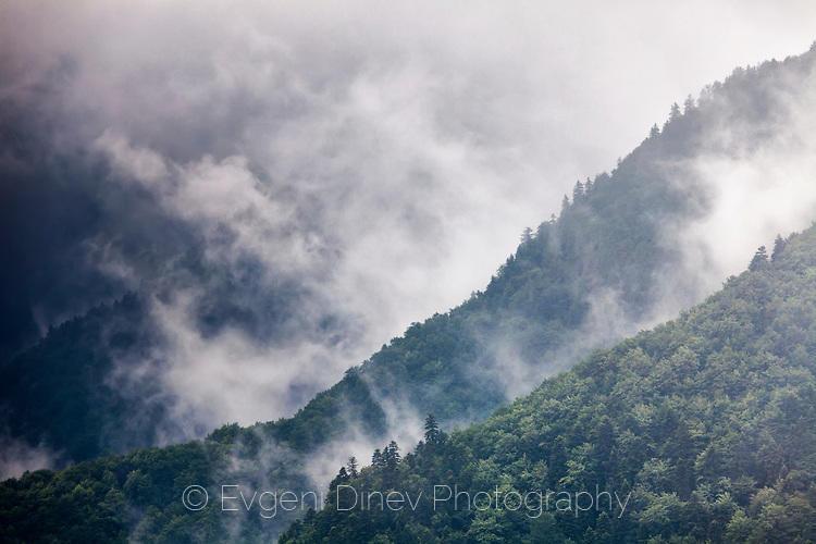 Облаци облизват планината