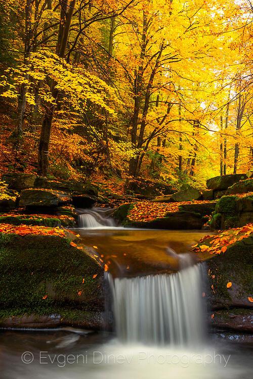 Есенни речни прагове