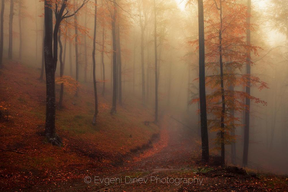 Царството на есента