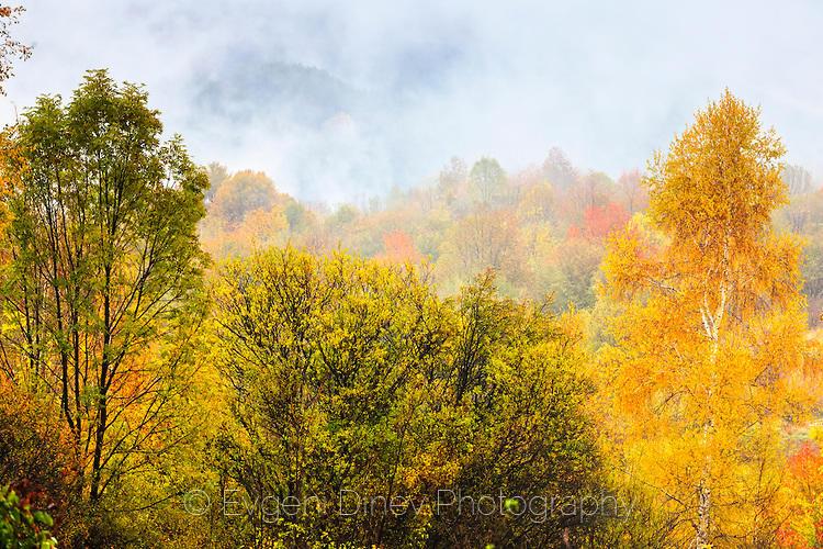 Живописна есен