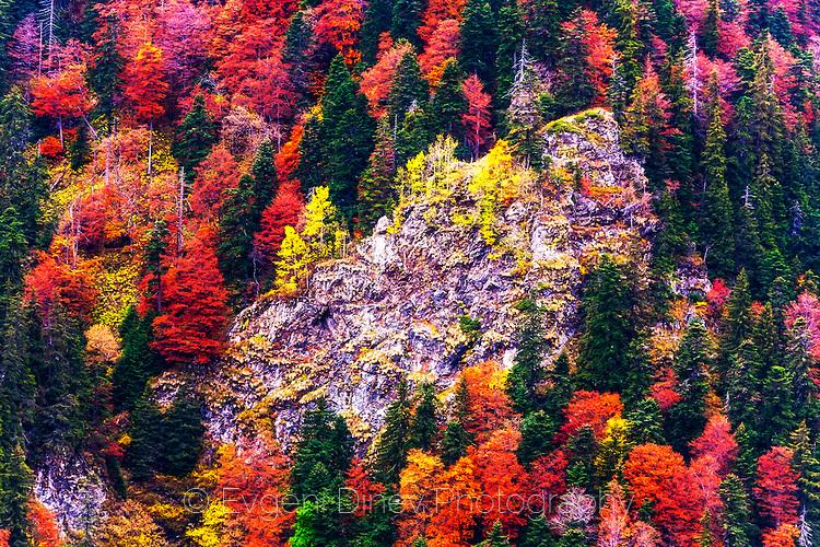 Страполанински есенен пейзаж