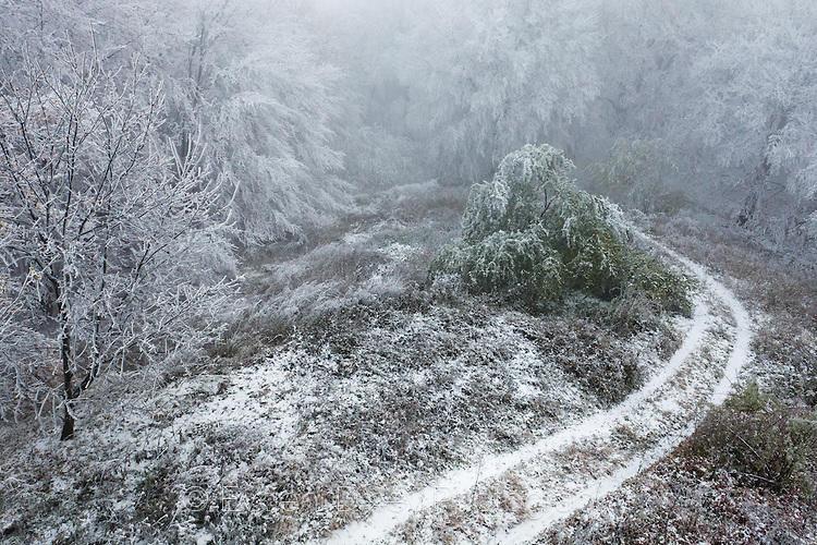 Есенен сняг
