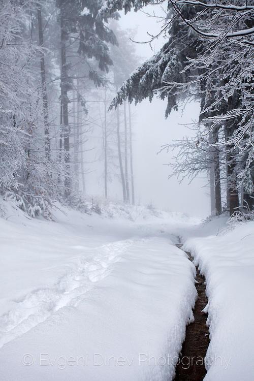 Малък поток в снега