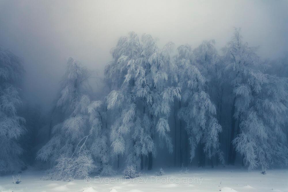 Натежала от сняг гора