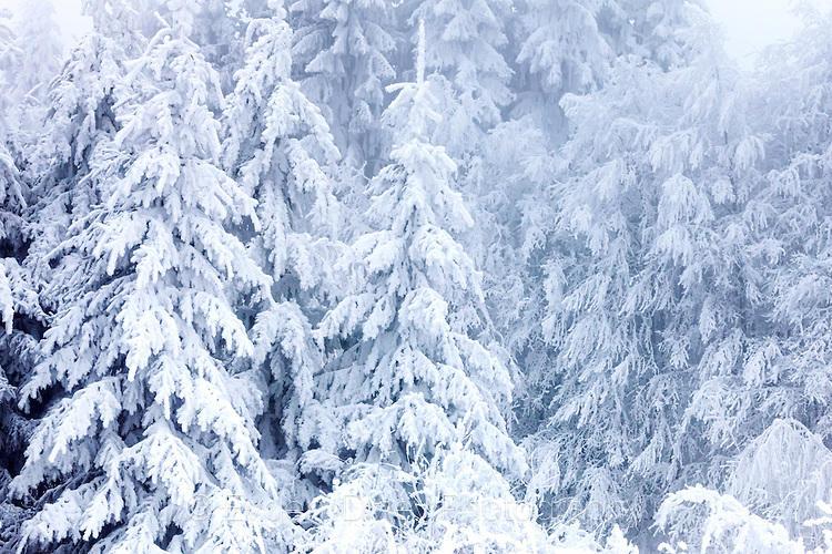 Гора под тежък сняг