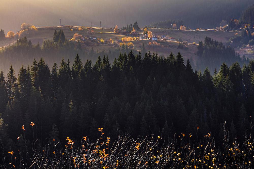 Есенно край Гела