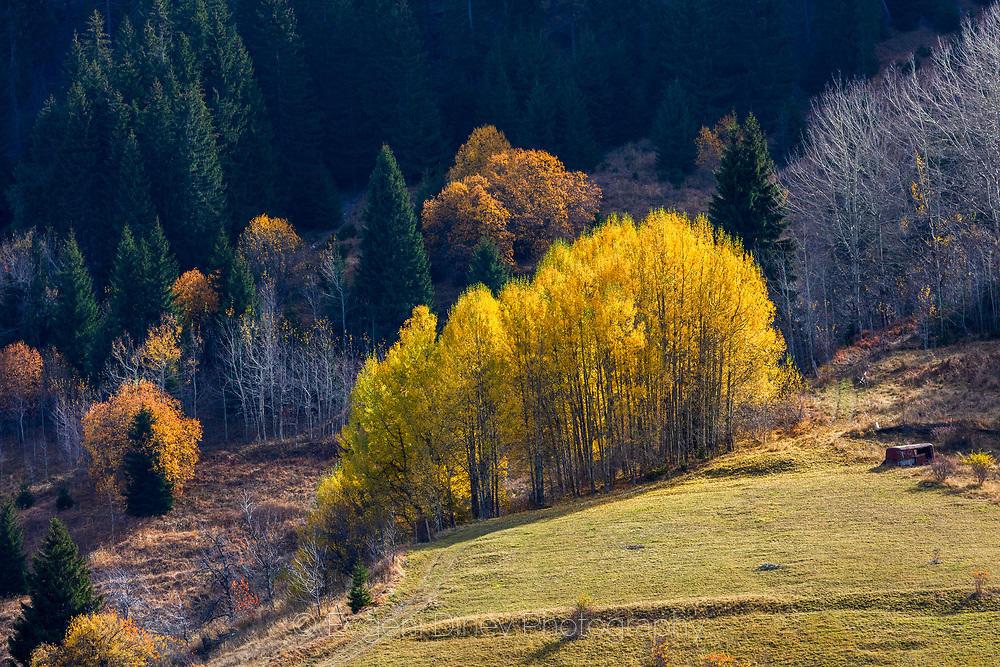Шарена есен край Гела