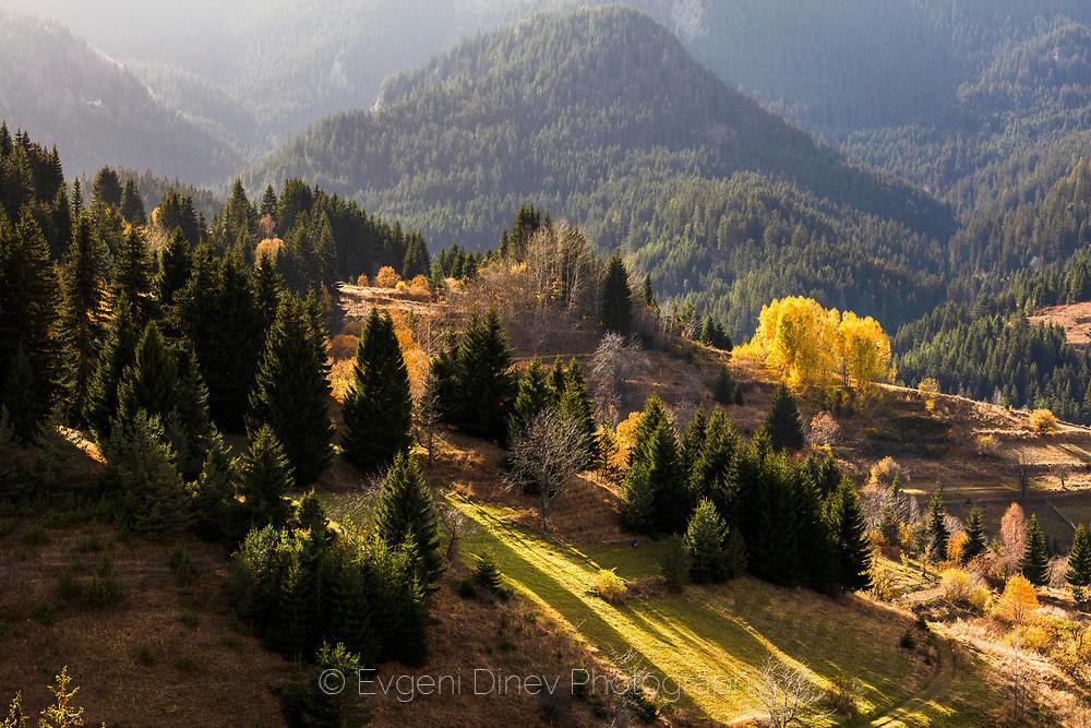 Слънчева есен край Гела