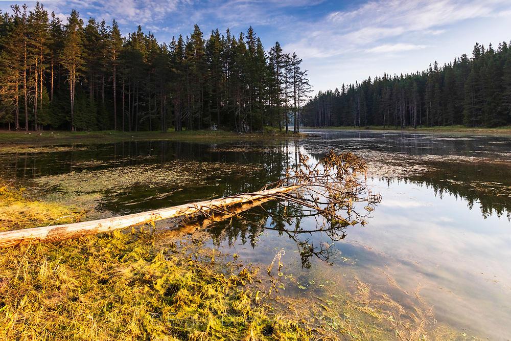 Езеро огряно в златна светлина