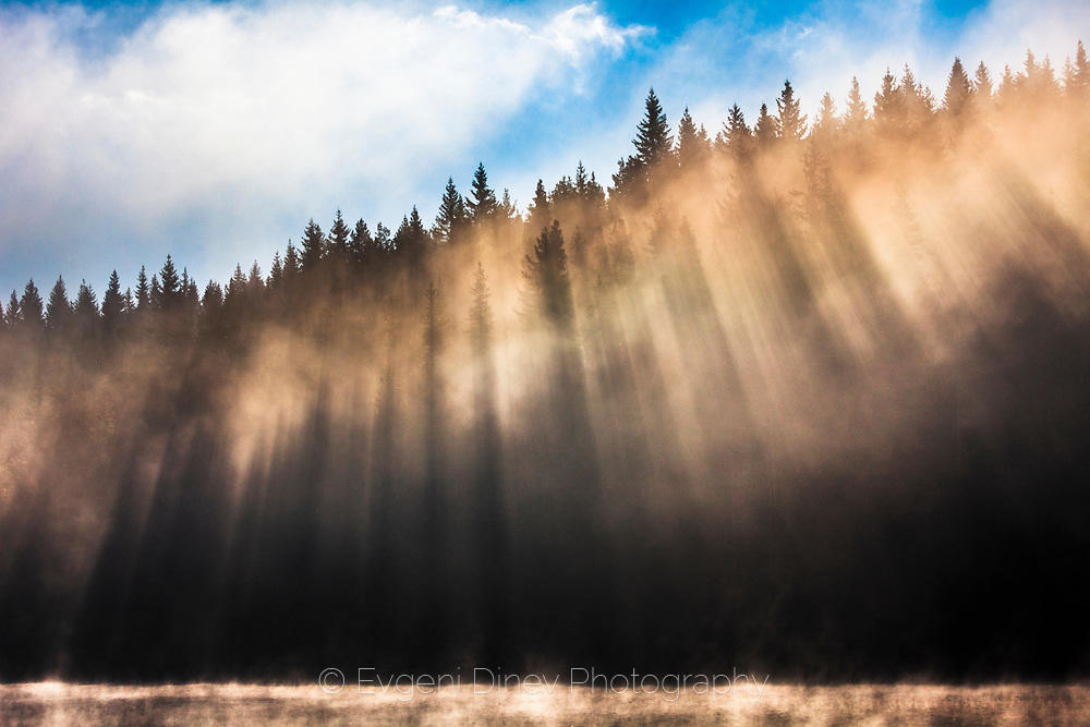 Лъчи след мъгла