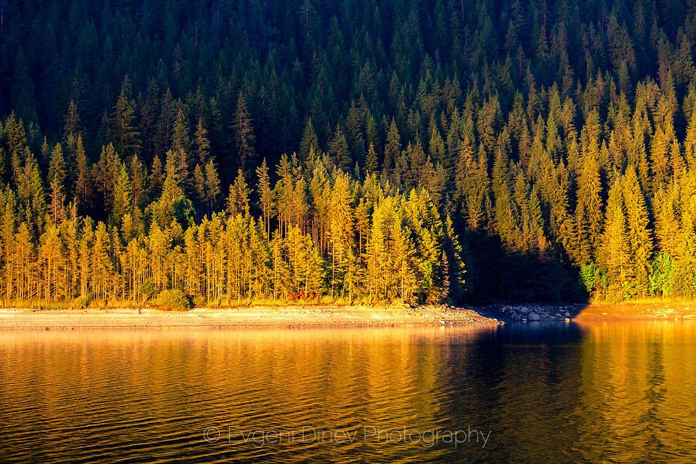 Борова гора край езеро озарена в златната светлина на залеза