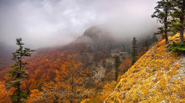 Панорамна гледка към Кадемлийското пръскало