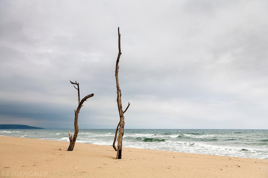 Пуст плаж на Камчийски пясъци