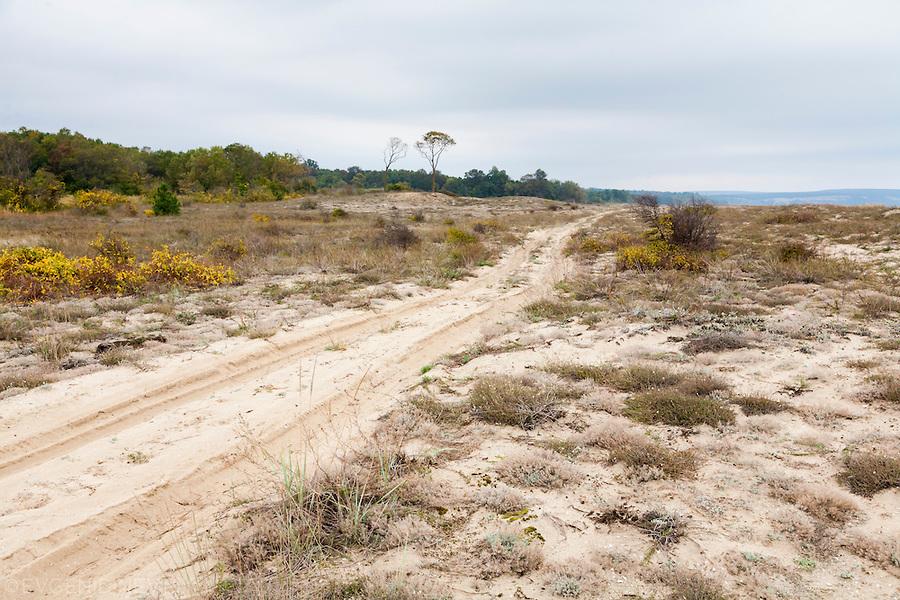 Камчийски пясъци есенно време