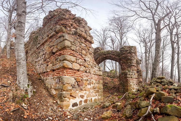 Портата на Кипиловско кале
