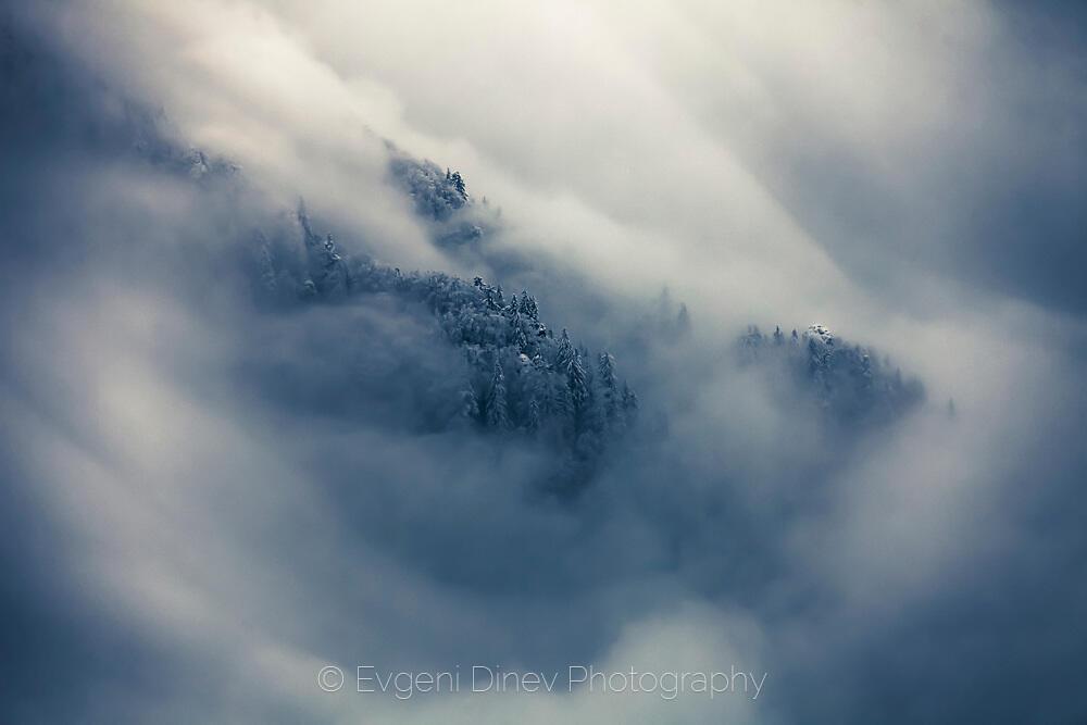 Гнездото на облаците