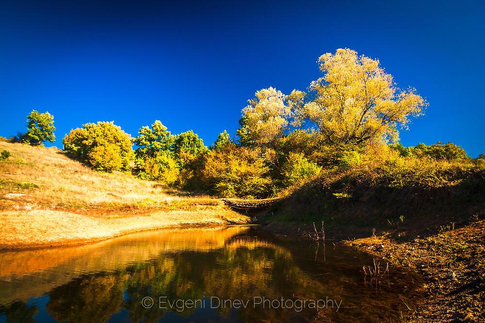 Езерце по пътя между Бабек и Свежен