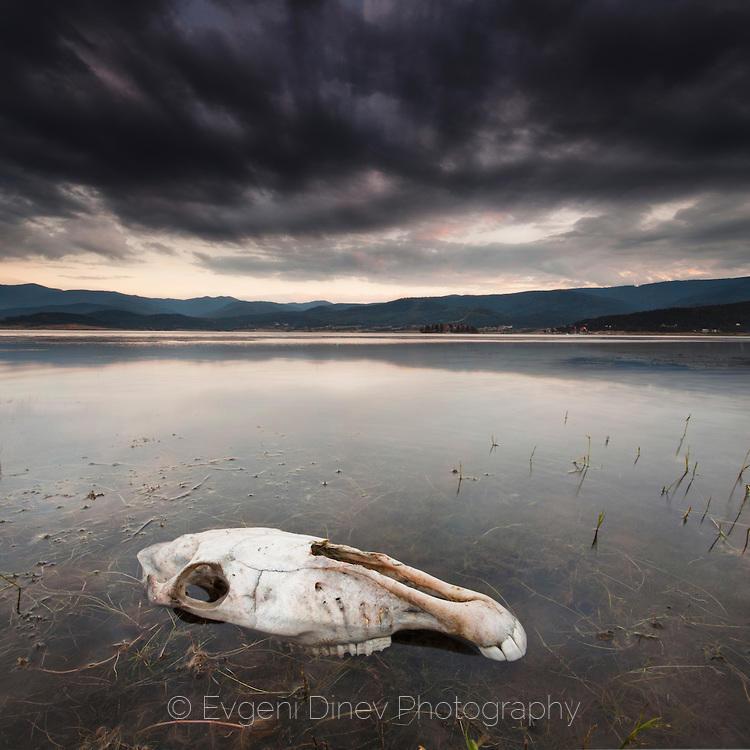 Езерото на мъртвите
