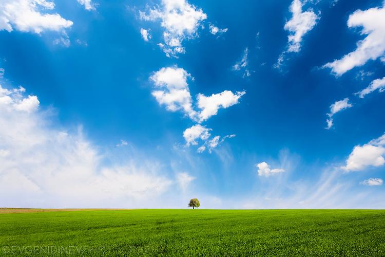 Бели облаци, синьо небе, зелено поле
