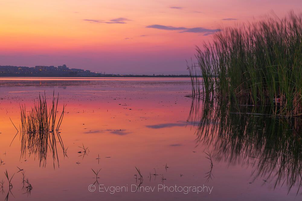 Лилаво езеро