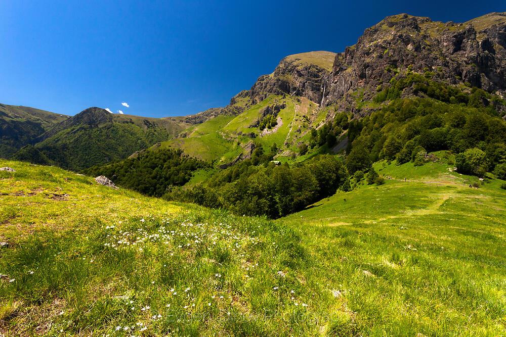 Свеж планински килим