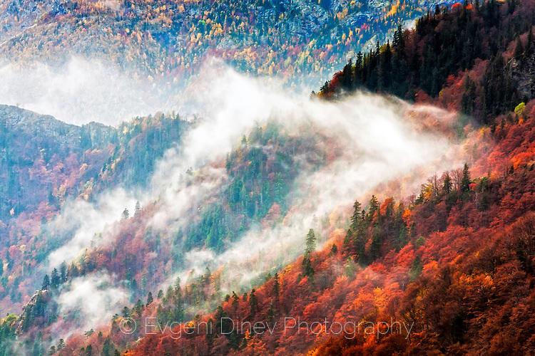 Парчета мъгла