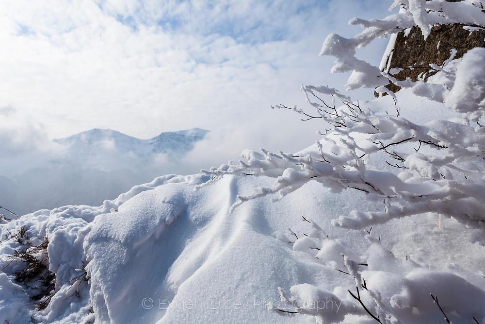 Снежен прозорец към Триглав
