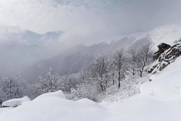 Снежния Балкан