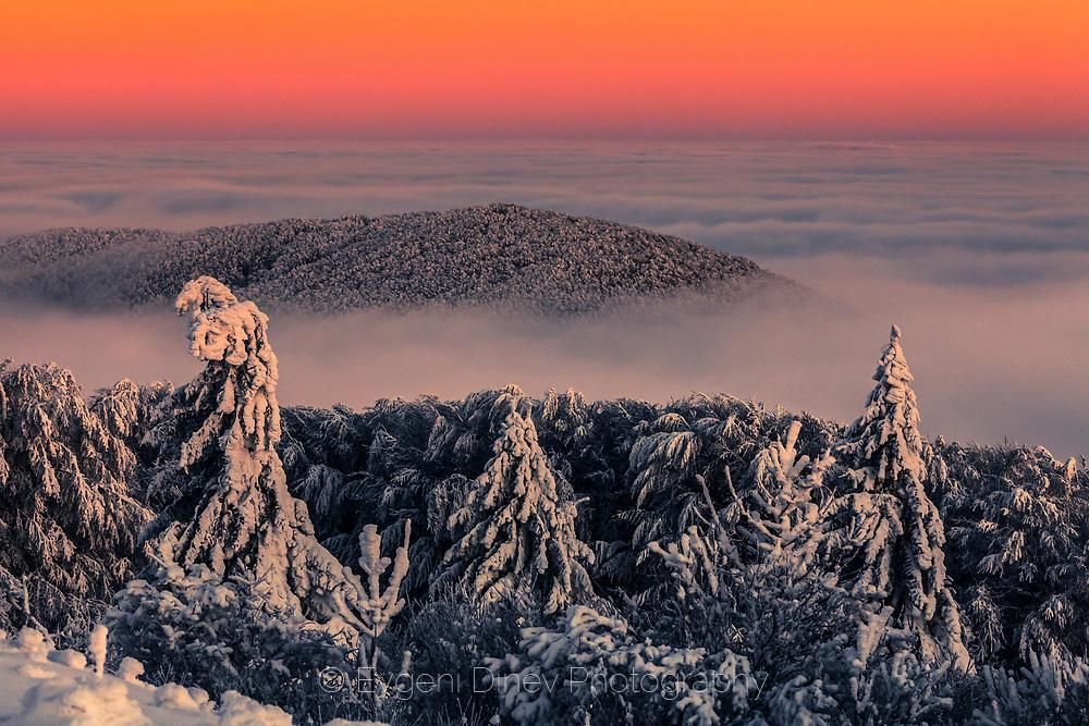 Снежна гора над облаците