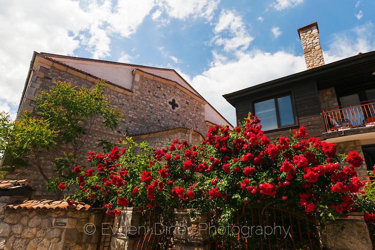 Аленочервени рози