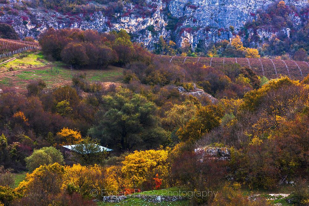 Есен в Русенски лом