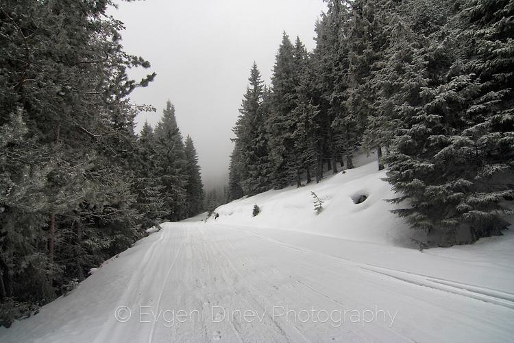 По снежния път в планината