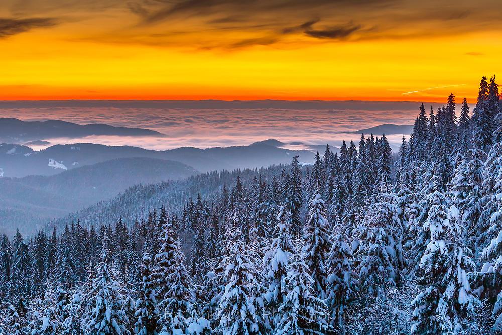 Заснежена гора над облаците преди изгрев