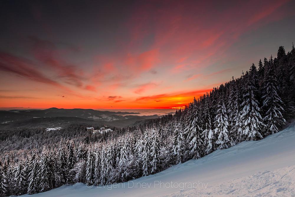 Пейзаж от ски писта