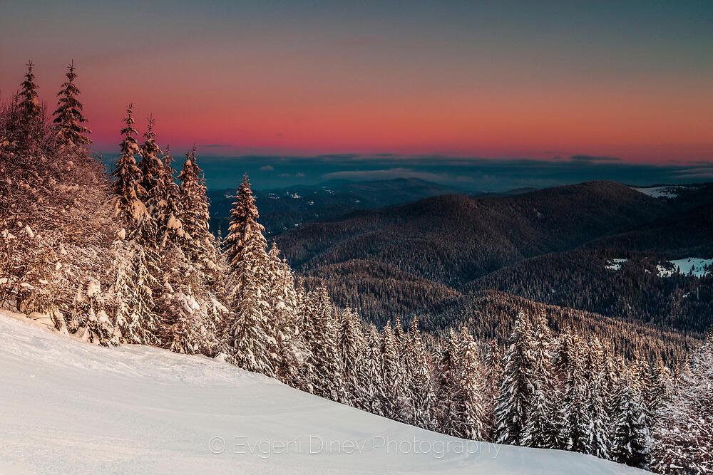 Деликатен зимен пейзаж
