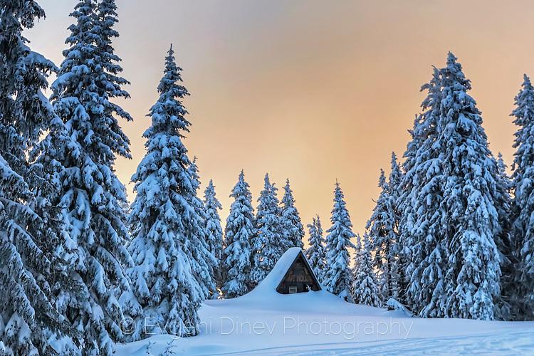 Снежна колиба