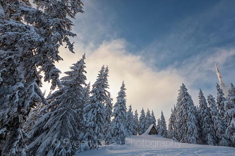 Бунгало затрупано в сняг