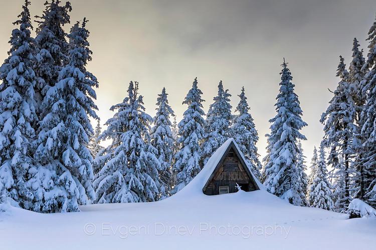 Топла къща