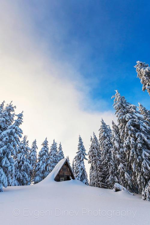 Покрив се подава над снега