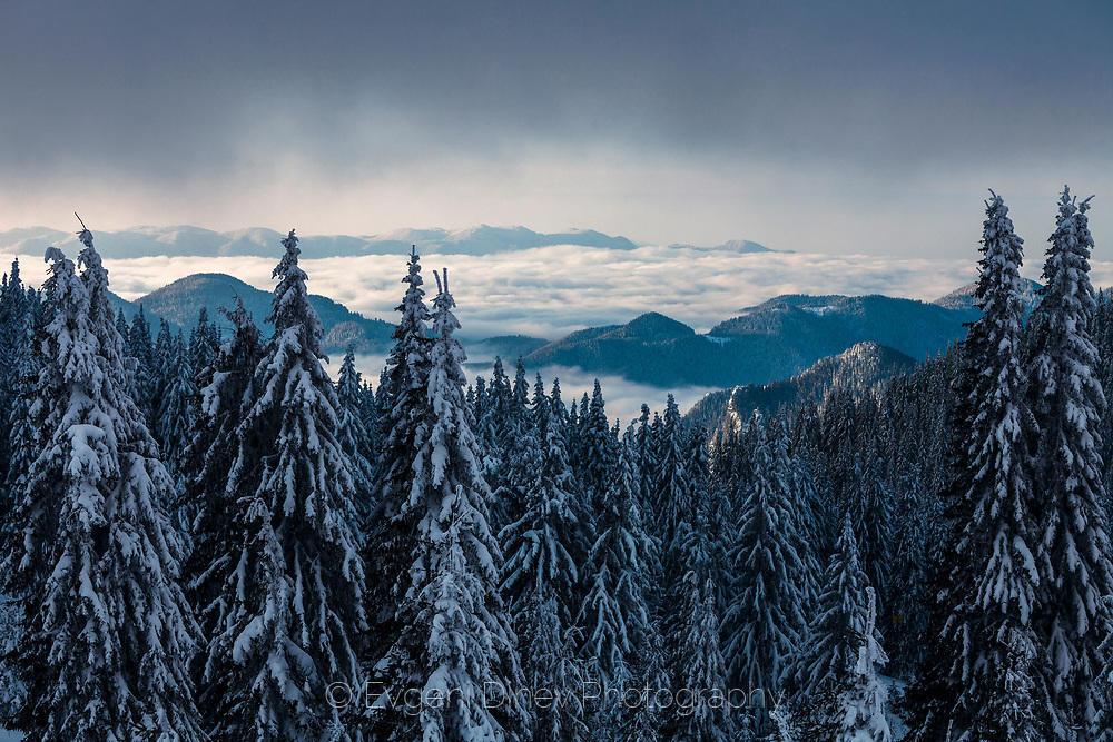 Снежни върхове над облаците