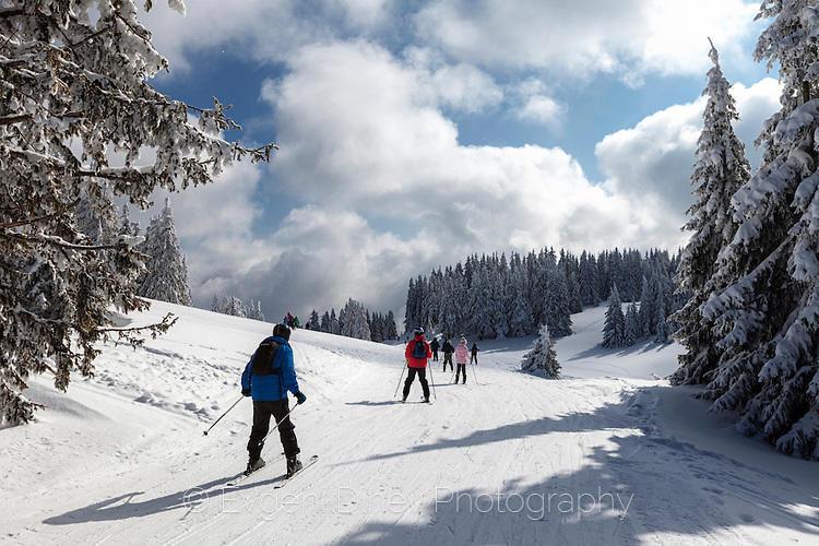 Пейзаж със скиори