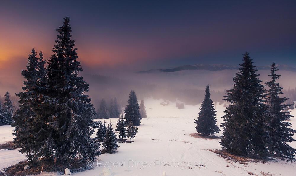 Мразовито утро край Снежанка