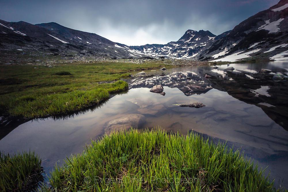 Свежа зеленина край Влахини езера