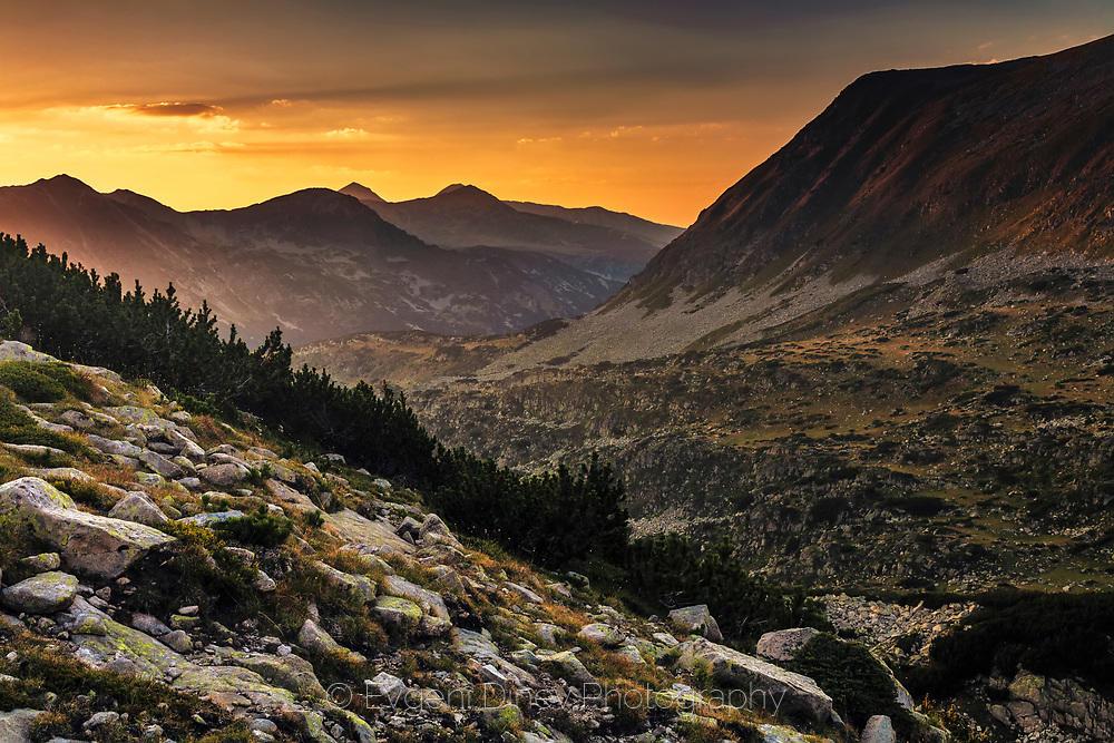 Долина в Пирин огрята в златна светлина