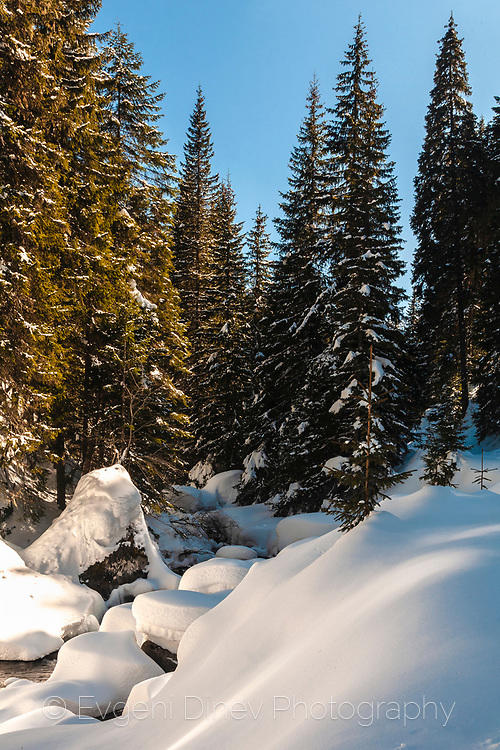 Заснежена гора в Пирин