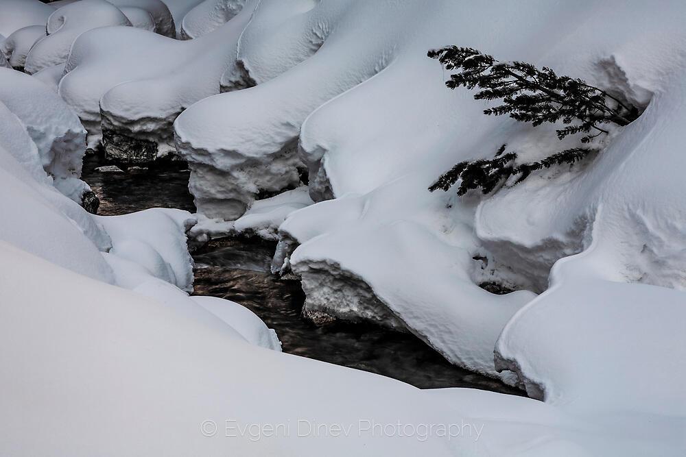 река Дамяница в снежна покривка