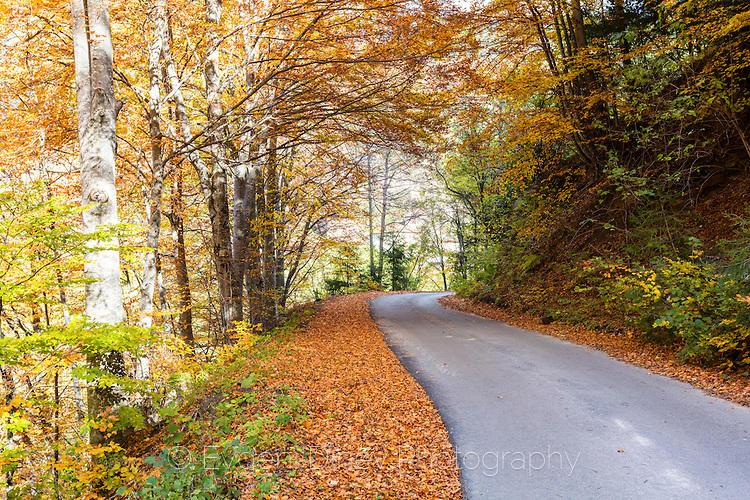 Междуселски път в Родопите