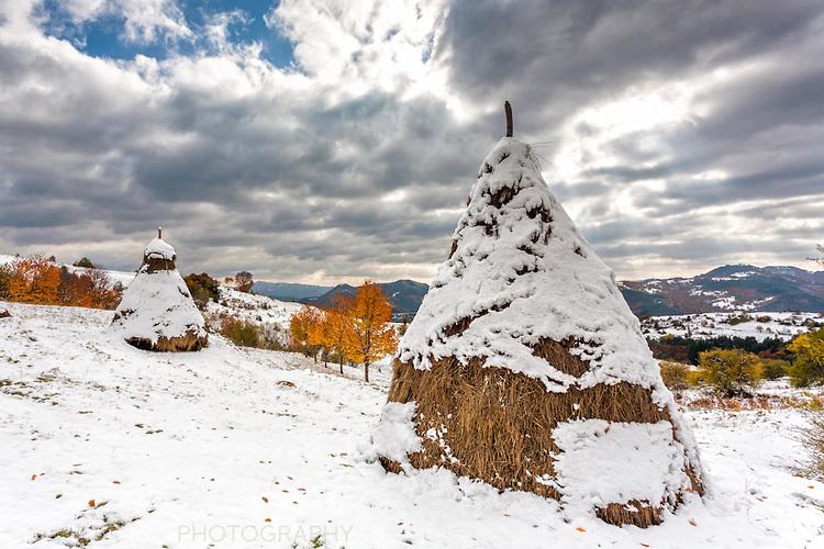 Купи сено отрупани със сняг