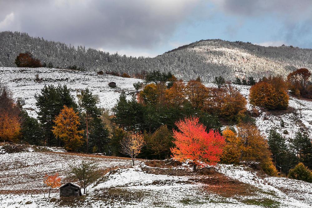 Есенни Родопи поръсени със сняг